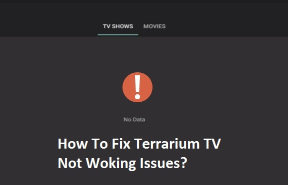 No Data on Terrarium TV Issue: App Not Working Error [FIXED]